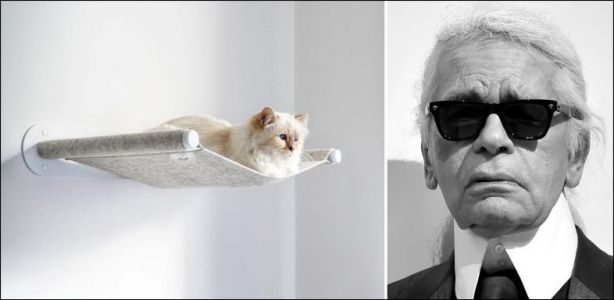Marketing - La chatte de Karl Lagerfeld fait la promo d'un hamac