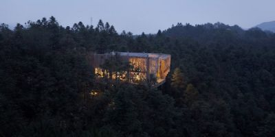 """ARCHITECTURE:  """"Treehouse M"""""""