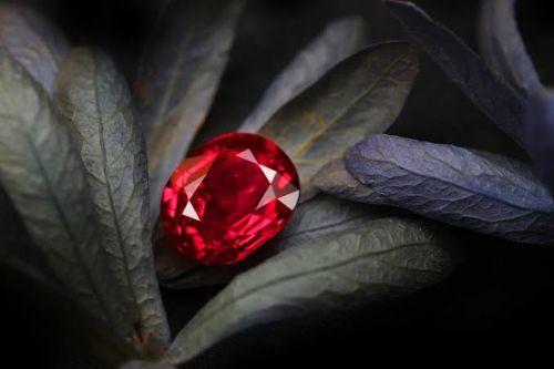 6 Facts To Know About This Popular January Birthstone, Garnet